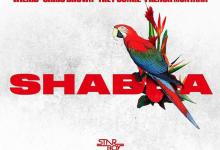 Shabba-Wizkid, Chris Brown, Trey Songz, French Montana