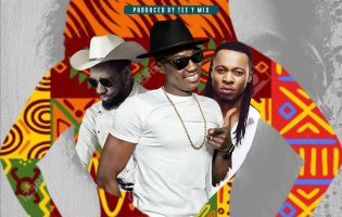 (Video) Sound Sultan ft Phyno & Flavour – African Lady