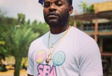 GOVERNMENT HASN'T DONE ENOUGH TO COMBAT CYBER-CRIME — FALZ